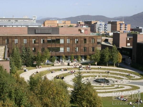 挪威留学专业名校
