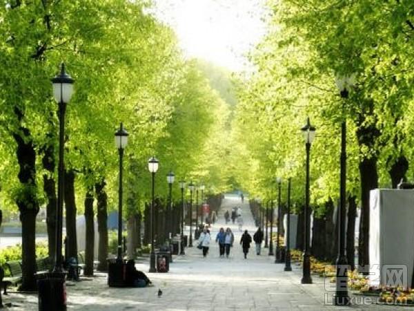 挪威留学的优势专业是什么