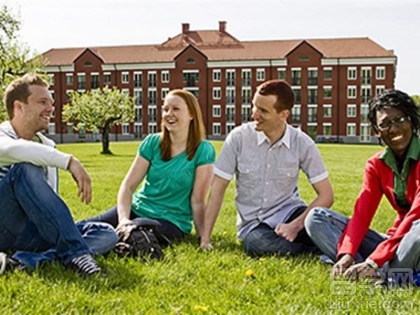 留学瑞典林奈大学哪些专业可以专升本?